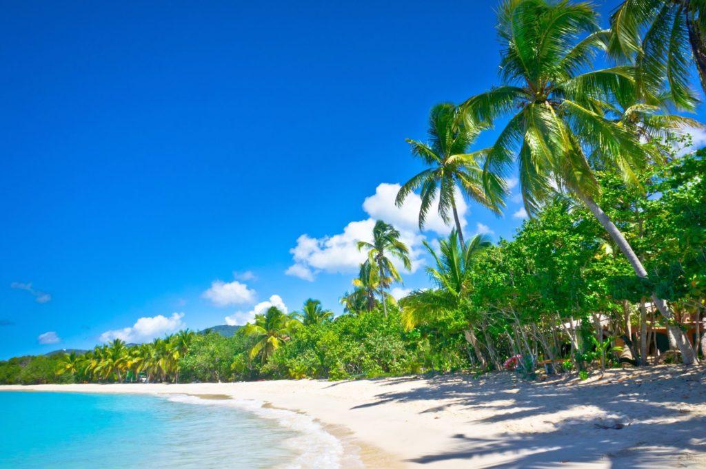 Czarter jachtów na Karaibach - plaża na Saint Lucia